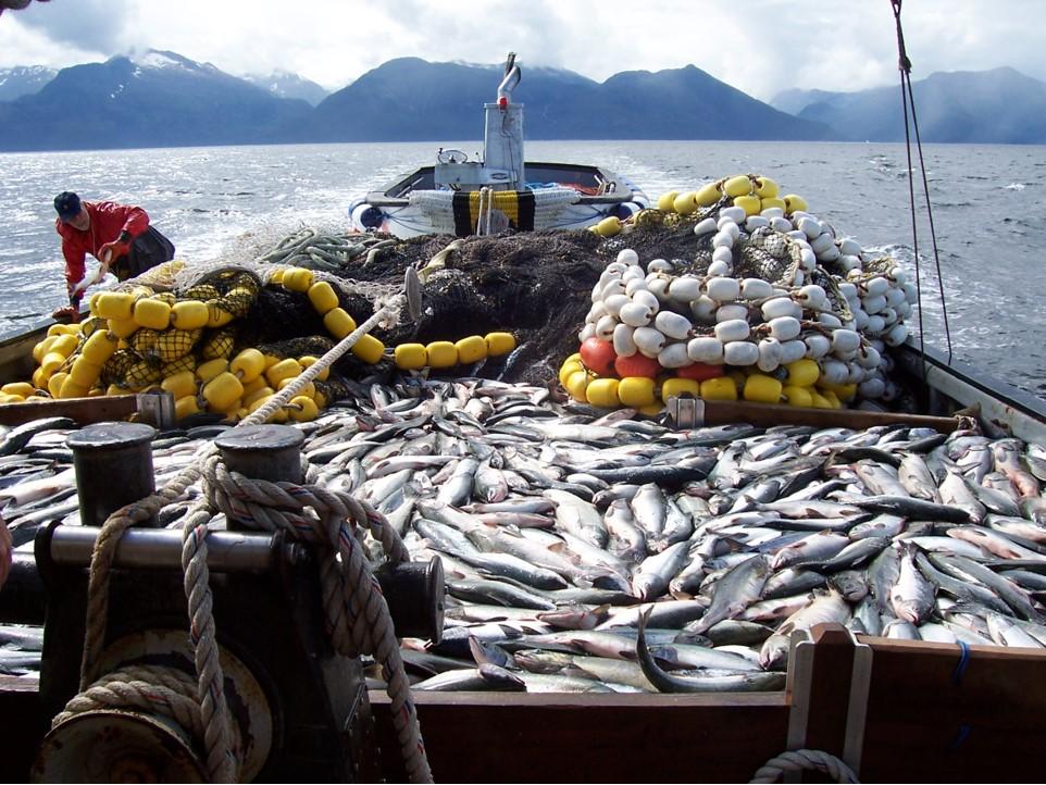 Our fleet for Elias v fishing